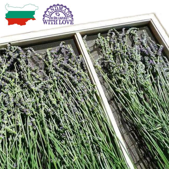 dry-lavender-bulk-bg