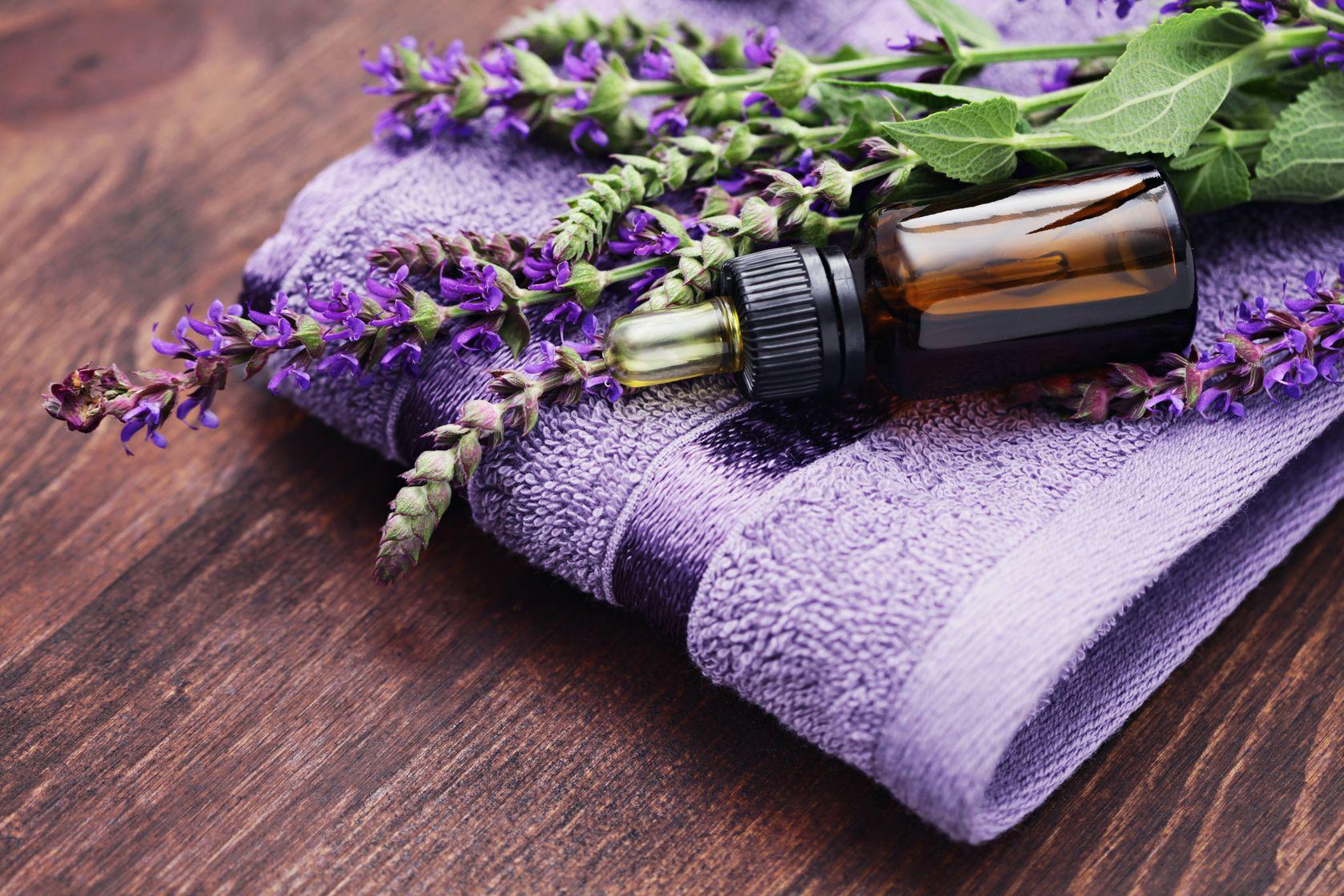 useful-properties-lavender